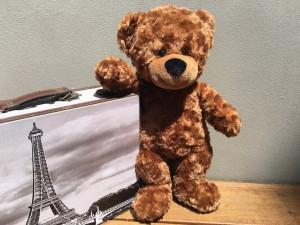 Teddy Bear Passport Jet the Bear