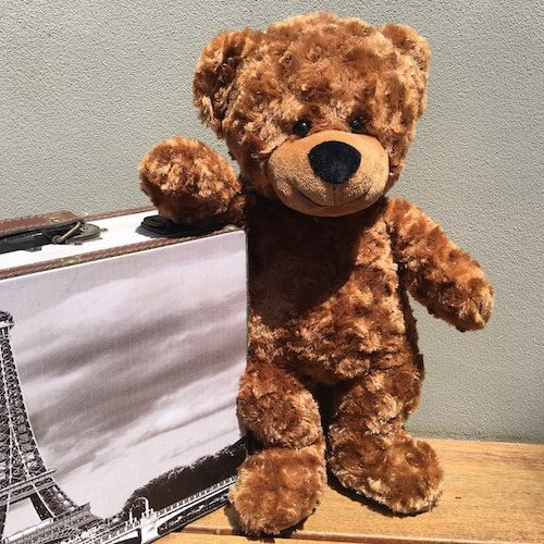 Teddy Bear Passport Jet the Bear